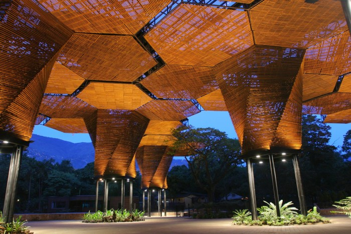 Vía_ The Jardin Botanico-Orquideorama. Credit_ Sergio Gómez